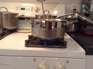 04_Pot with Low Heat On Thermometer In - Start Time 815